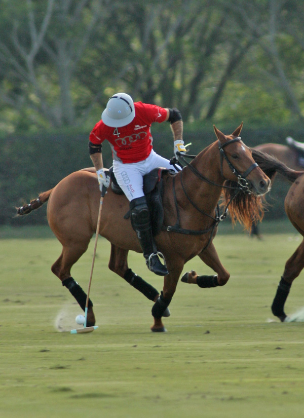 polomagazinepachecoPhotos-Bobby Barry Cup Orchard Hill Audipoloteam 7